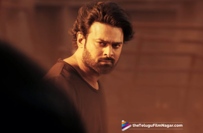 Rebel Star Prabhas About Saaho Movie,Telugu Filmnagar,Telugu Film Updates,Tollywood Cinema News,2019 Latest Telugu Movie News,Prabhas About Saaho,Saaho Movie Latest Updates,Saaho Telugu Movie News,Saaho Movie Shooting Details,Prabhas About His Action Thriller Movie